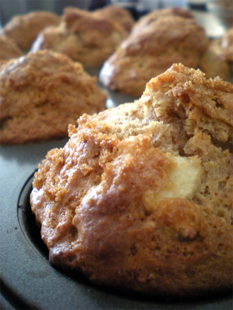 whole wheat apple muffins baked